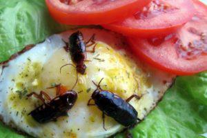 Средство от тараканов инсектицид